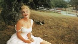 Marilyn Under Tree